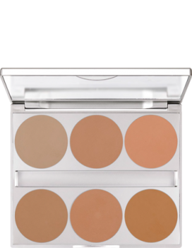 Dual Finish Palette 6 Farben - 10 g - Cold Complexion