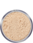 Anti-Shine Powder - 10 g - Medium